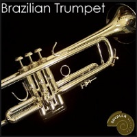 Brazilian TP.jpg